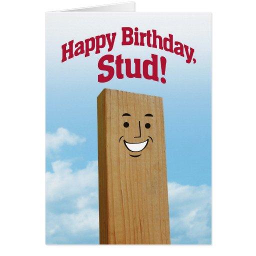 Funny Birthday Card For A Stud Zazzle