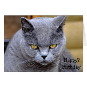 Grumpy cat birthday gifts on zazzle funny birthday card with angry or grumpy cat bookmarktalkfo Images