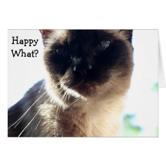 Funny Birthday Card with Cat: Happy What?