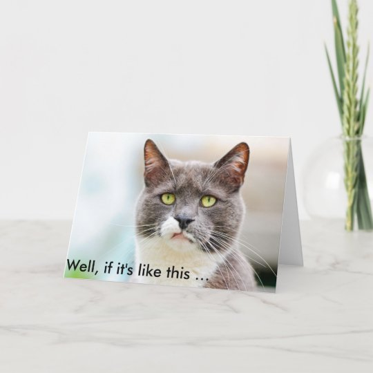 Funny Birthday Card With Grumpily Looking Cat