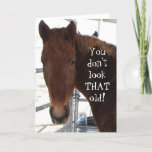 "Funny Birthday Compliment TWH Horse Western Card<br><div class=""desc"">Funny Western &quot;over the hill&quot; birthday wishes. Sweet face of a sorrel red Tennessee Walking Horse on cover. Cover text reads YOU DON&#39;T LOOK THAT OLD! Inside text reads AND THAT&#39;S STRAIGHT FROM THE HORSE&#39;S MOUTH! HAPPY BIRTHDAY! NOW LET&#39;S SEE SOME ID! Personalize or customize. A slice of country living,...</div>"