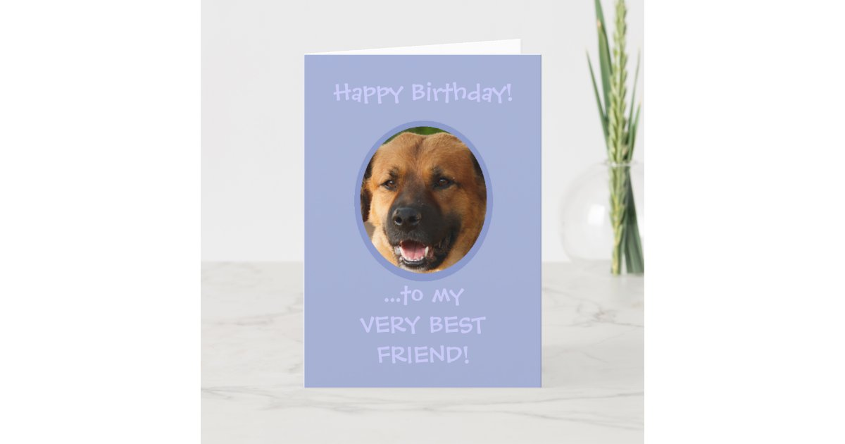 Funny Birthday From Dog To Owner Custom Photo Card