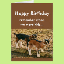 Funny Birthday Over the Hill Old Goat Humor Card