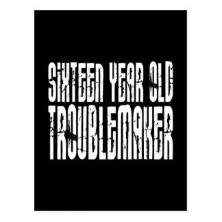 Funny Birthdays : Sixteen Year Old Troublemaker Postcard