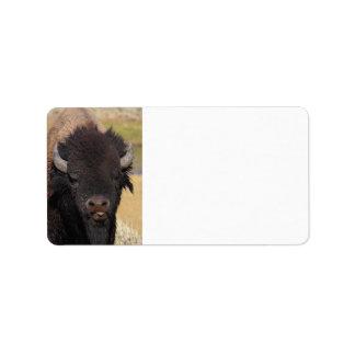 funny bison label