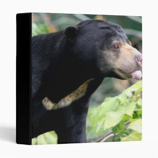 Funny Black Bear Binder
