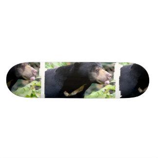 Funny Black Bear Skateboard