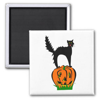 Funny Black Cat and Pumpkin 2 Inch Square Magnet