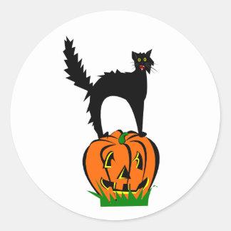 Funny Black Cat and Pumpkin Classic Round Sticker
