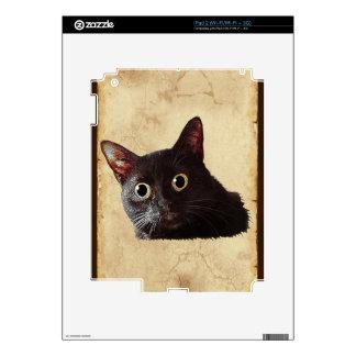 Funny Black Cat Animal Pet iPad2 Skin Skins For The iPad 2