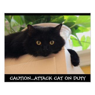 Funny Black Cat Poster, Attack Cat on Duty Poster