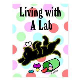 Funny Black Labrador Cartoon Illustration Postcard