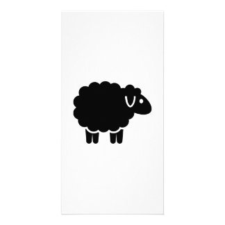 Funny black sheep photo card