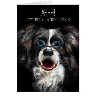Funny Border Collie Birthday Gray Hair and Glasses Card