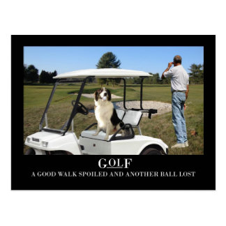 Funny Border Collie Dog Postcard, lost ball Postcard