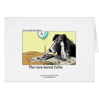 Funny Border Collie Greeting Card