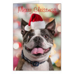 Funny Boston Terreir with Santa Hat Greeting Card