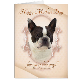 Funny Boston Terrier Mother's Day Card