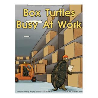Funny Box Turtles At Work Postcard