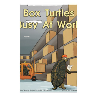 Funny Box Turtles At Work Stationery