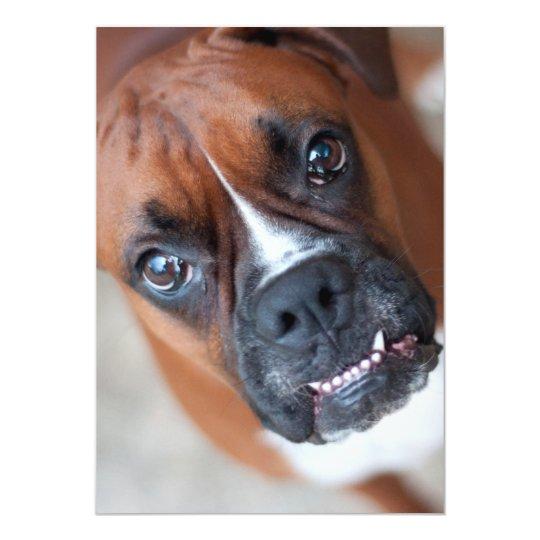 Funny boxer dog card
