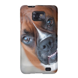 Funny boxer dog samsung galaxy SII cases