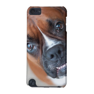 Funny boxer dog iPod touch (5th generation) case