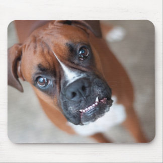 Funny boxer dog mouse pad