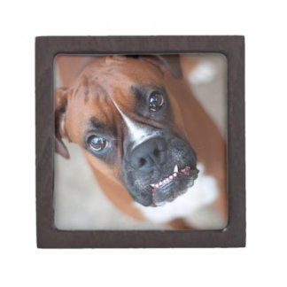 Funny boxer dog premium jewelry box