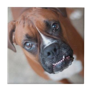 Funny boxer dog small square tile