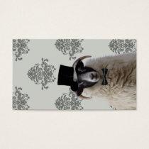 Funny bridegroom sheep in top hat