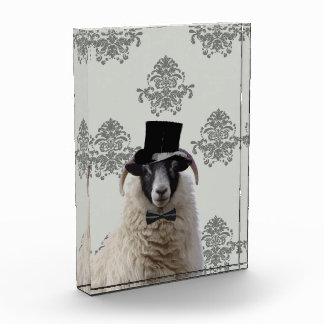 Funny bridegroom sheep in top hat acrylic award