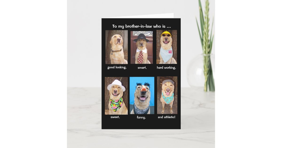 Funny Brother In Law Birthday Card Zazzle