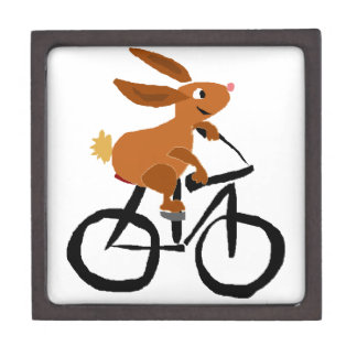 Funny Brown Rabbit Riding Bicycle Gift Box