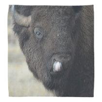 Funny Buffalo Bandana
