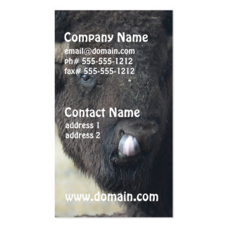 Funny Buffalo Double-Sided Standard Business Cards (Pack Of 100)