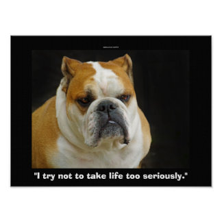 Funny Bull Dog Pet-lovers Demotivational Poster
