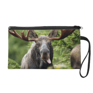 Funny Bull Moose Wristlet Purses