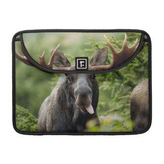 Funny Bull Moose Sleeves For MacBooks