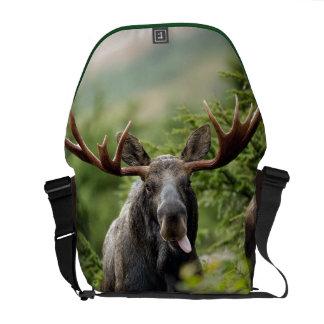 Funny Bull Moose Messenger Bag