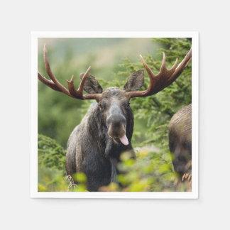Funny Bull Moose Paper Napkin