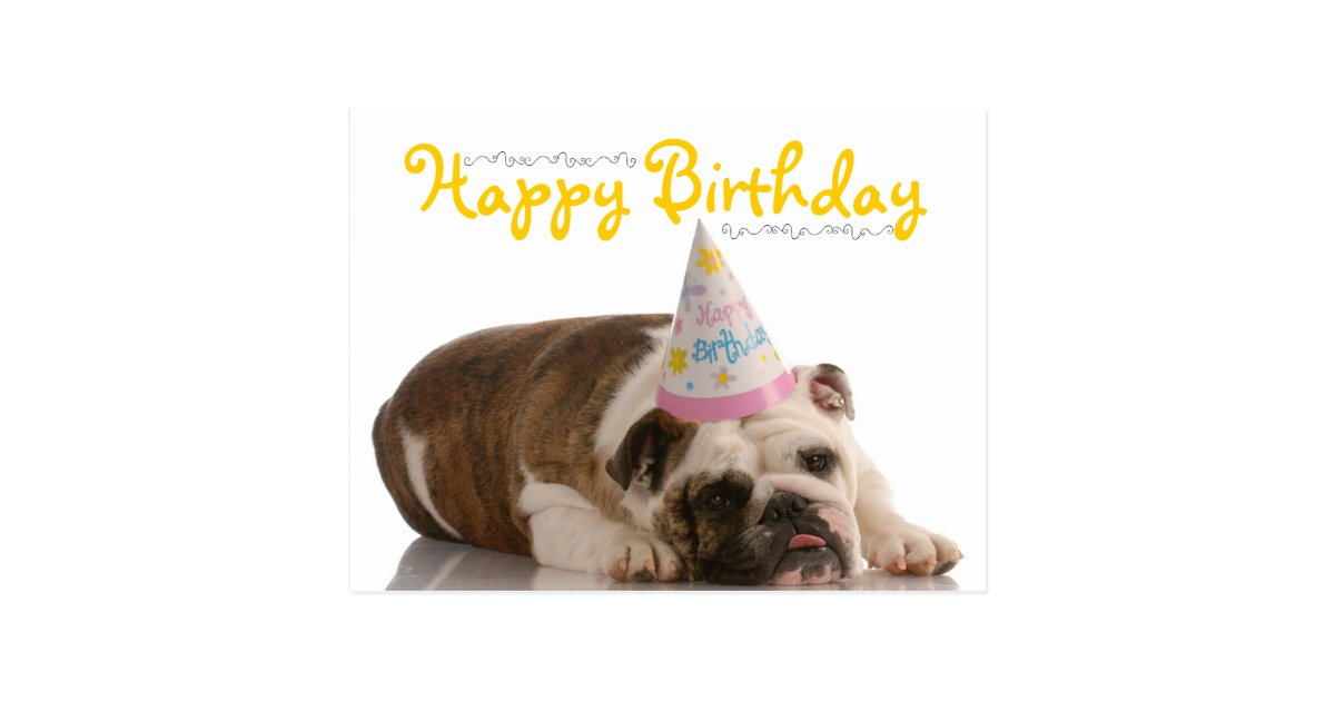 Funny Bulldog Birthday Postcard Zazzle Com