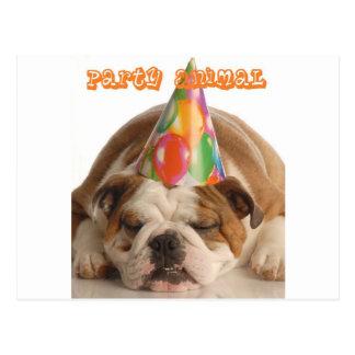Funny Bulldog Gifts-Party Animal Sleeping Bulldog Postcard