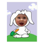 Funny Bunny Rabbit Photo Face Template Post Cards
