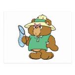 Funny Butterfly Catcher Bear Postcard