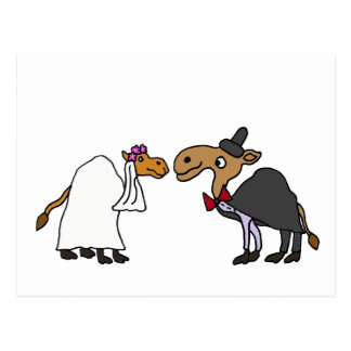 Funny Camel Bride and Groom Wedding Cartoon Postcard