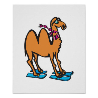 funny camel on skis poster