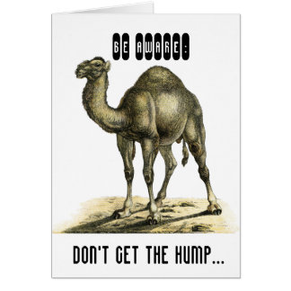 FUNNY CAMEL PERSONALISED BIRTHDAY CARD CARDS