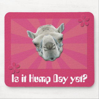 Funny Camel Retro Sunburst and Flowers Hump Day Mouse Pad