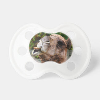 Funny Camel Wildlife Animal Photo Pacifiers